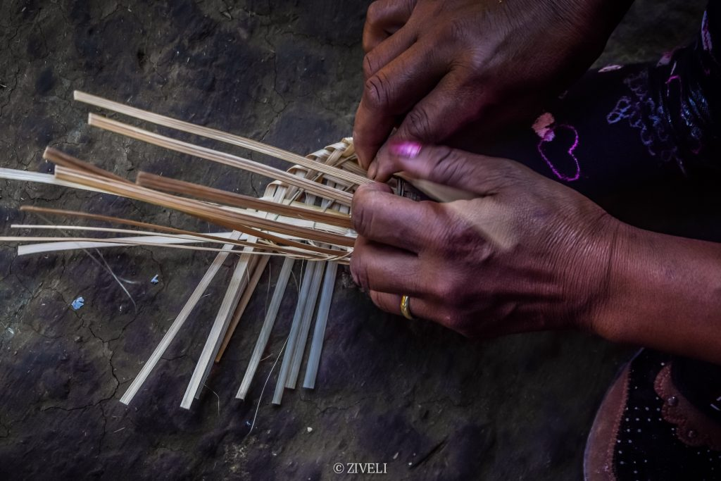 Ziveli India